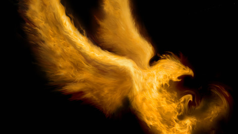 Bird of Flame